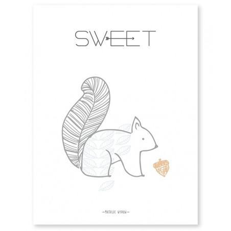 Lámina Ardilla Sweet - Lilipinso