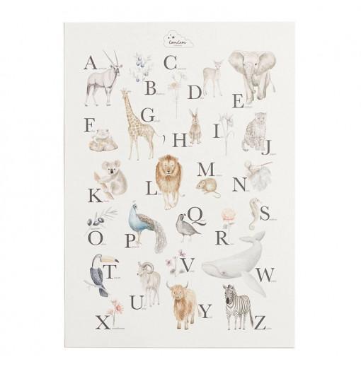 Póster Alphabet - Cam Cam...